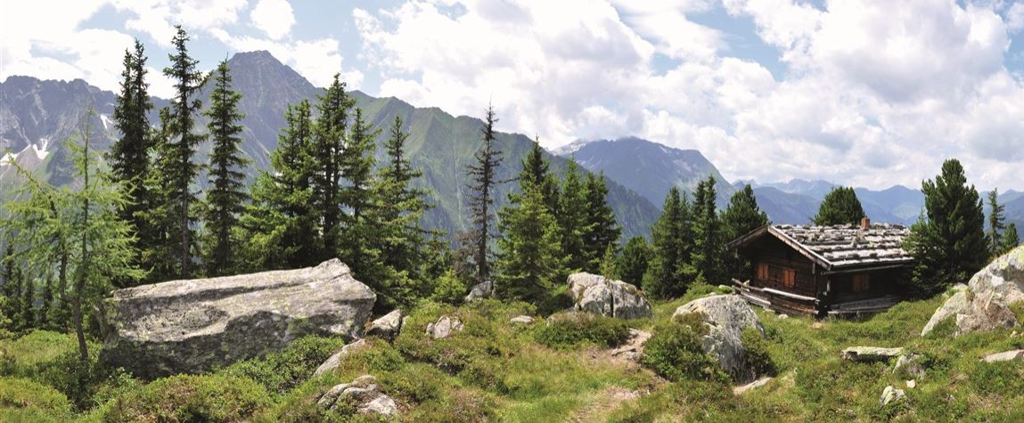 Alpenlandschaft 2 Konvex8