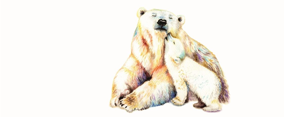 Eisbär Konvex8