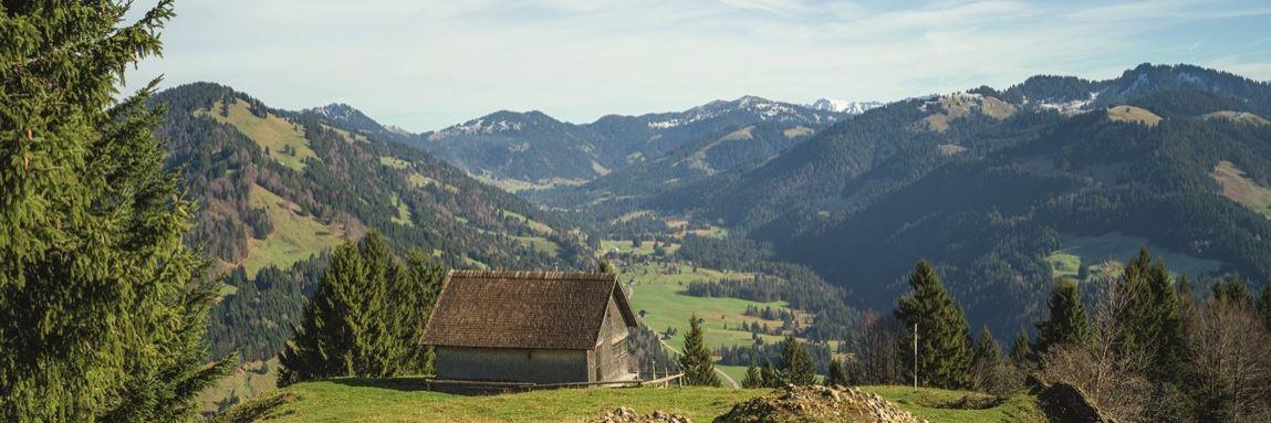 Hittisberg Vorarlberg Konvex7