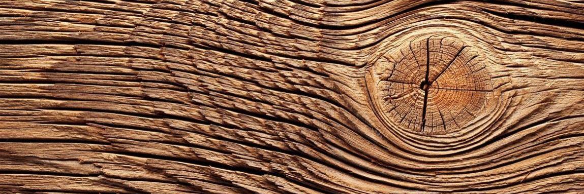 Holz Konvex7
