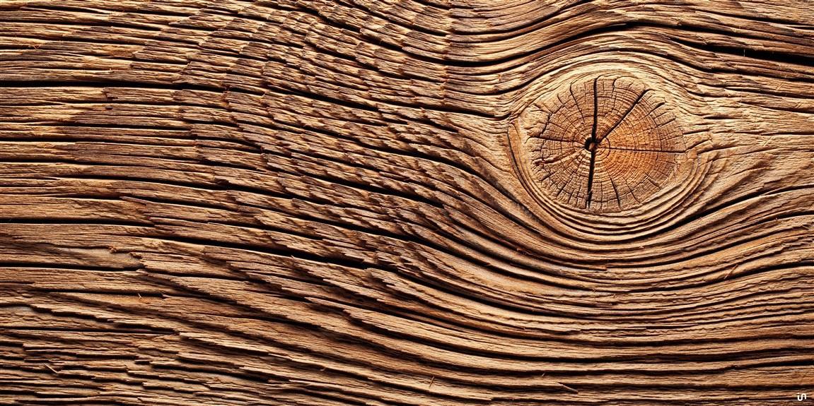 Holz Konvex11