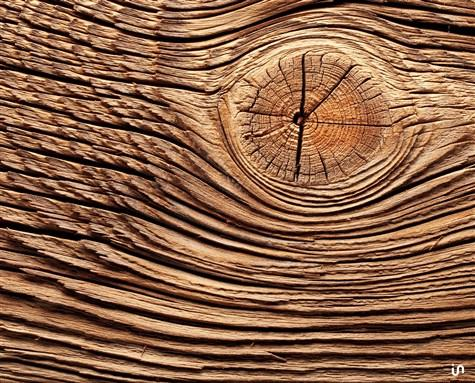 Holz Konvex3