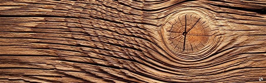 Holz Konvex4