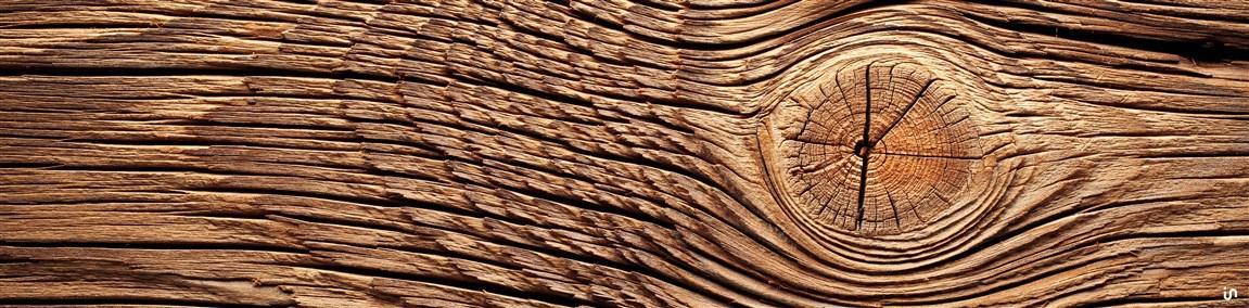 Holz Konvex5