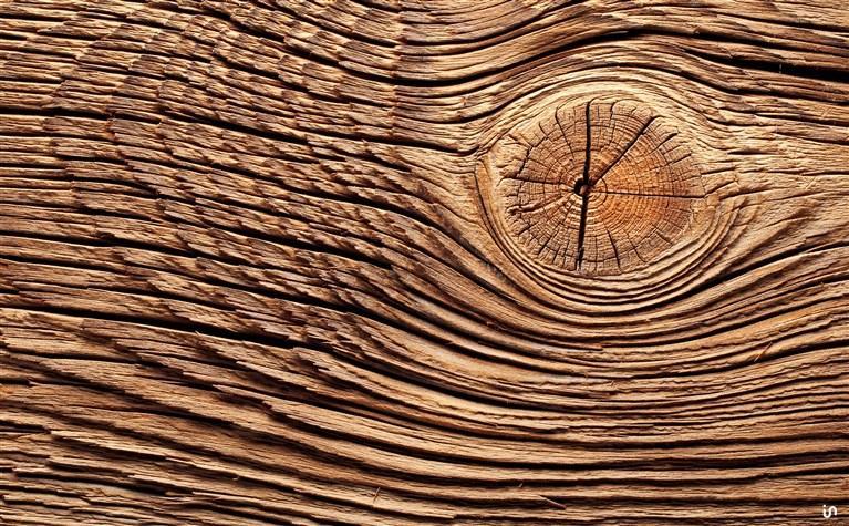 Holz Konvex6