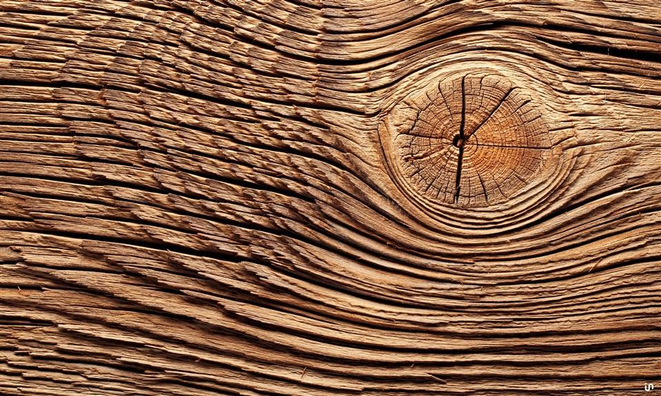 Holz Konvex9